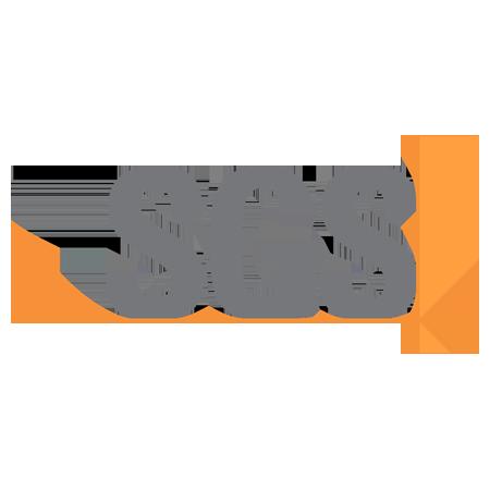 proimages/about/04/SGS.png